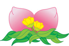 Oriental fruits. Oriental pink fruits with leaf and flowers vector illustration