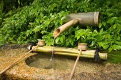 Oriental garden. Forest stream in a landscaped oriental garden. Water for drinking. Japan stock images
