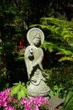 Oriental garden. Madeira  Stock Photography