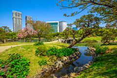 Oriental Gardens Tokyo Royalty Free Stock Photography
