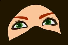 Oriental girl with green eyes Royalty Free Stock Images
