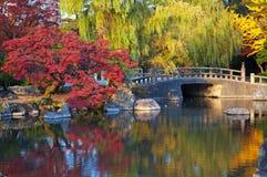 Oriental landscape Royalty Free Stock Image