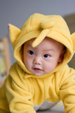 Oriental lovely baby. Crawling Clever Oriental baby on the bed and Baby wearing a yellow hooded clothing, curious expression on his face Stock Image