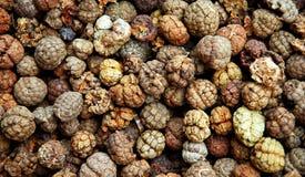 Oriental medicine herbs Stock Images