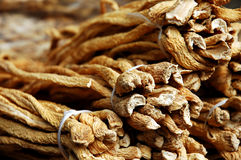 Oriental medicine herbs Stock Photography