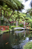 Oriental Monte Palace Tropical Gardens and Ponds Stock Photography