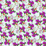 Oriental pattern04 Royalty Free Stock Images