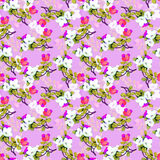 Oriental pattern06 Stock Photography