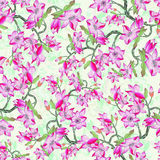 Oriental pattern018 Stock Images