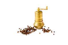 Oriental pepper mill and peppers isolated Royalty Free Stock Photos