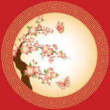 Oriental plum blossom wallpaper Royalty Free Stock Images