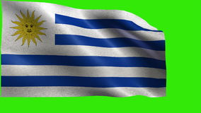 Oriental Republic of Uruguay, Republica Oriental del Uruguay, Flag of Uruguay - LOOP. Beautiful 3d flag animation on green/blue screen in 4k format - seamless stock video footage