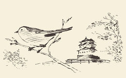 Oriental sakura bird drawn vector sketch. Oriental landscape with pagoda, sakura and bird on front, hand drawn vector illustration, sketch Royalty Free Stock Photo