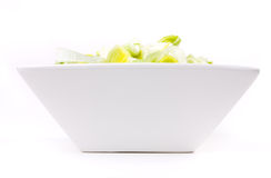 Oriental Salad. Of chopped leek and celery in attractive white bowl against white background Stock Images