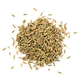 Oriental seasoning zira Stock Photos