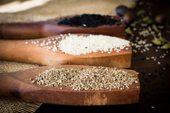 Oriental spice. Fennel seeds, sesame and black seeds on wooden old spoons Stock Photography