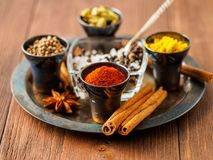 Oriental spice set - coriander, red pepper, turmeric, cinnamon,. Star anise, rosemary various seasonings in metall cups, on brown wooden table, side view, mcro Stock Photos