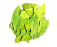 Oriental spices. Pack of bay leaves on white background Royalty Free Stock Photo