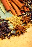 Oriental spices Royalty Free Stock Image