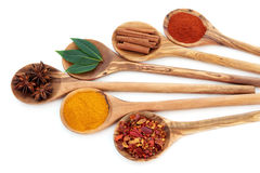 Oriental Spices Royalty Free Stock Photography