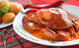 Oriental Spicy Crab royalty free stock images
