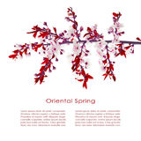 Oriental spring flowers card Royalty Free Stock Image