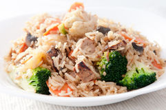 Oriental stir fry with vegetables. Fresh stir fried vegetables and diced chicken Royalty Free Stock Images