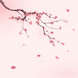 Oriental style painting, cherry blossom in spring royalty free illustration