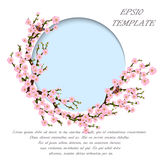 Oriental style painting, cherry blossom in spring Royalty Free Stock Images