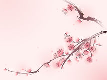 Oriental style painting, cherry blossom in spring royalty free stock photos