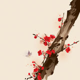 Oriental style painting, plum blossom in spring Royalty Free Stock Images