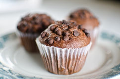 Oriental Tea with chocolate muffins Royalty Free Stock Photo