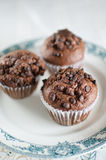 Oriental Tea with chocolate muffins Royalty Free Stock Images