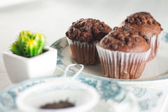 Oriental Tea with chocolate muffins. On elegant porcelain dish Stock Images