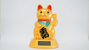 Oriental waving cat stock video footage