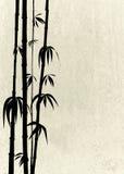 Orientalische Bambusschosse auf einer Steinbeschaffenheit Stockfotografie