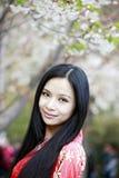 Orientalische Kirschjahreszeit Stockfotos