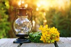 Orientalische Laterne der Weinlese und gelber Frühling fangen Blumen auf Stockfotografie