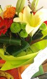 Orientalische lillies lizenzfreie stockbilder