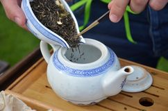 Orientalischer Tee Lizenzfreie Stockfotos