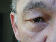 Orientalisches Auge Lizenzfreies Stockfoto