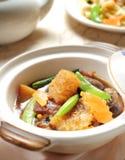 Orientalisk maträtt för lera-kruka havsgurka Royaltyfri Bild