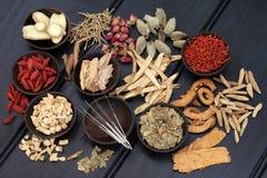 Orientalisk medicin Royaltyfri Bild