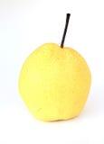 Orientalisk Pear Arkivbilder