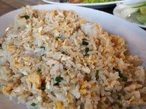 Orientalisk stekte ris för mat sakkunnig Royaltyfri Foto