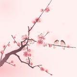 Orientalisk stilmålning, körsbärsröd blomning i vår Arkivfoton