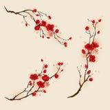 Orientalisk stilmålning, plommonblomning i vår Royaltyfri Foto