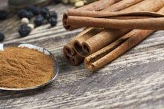 Orientaliska indiska kryddor ryktar curcuma för kardemumma för paprikamuskotnötchili kanelbrun på tappningträ Fotografering för Bildbyråer