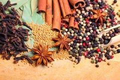 orientaliska kryddor Royaltyfri Bild