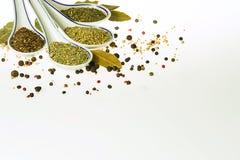 Orientaliska kryddor och örter Arkivfoton